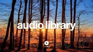 Download Acoustic Folk Instrumental – Hyde - Free Instrumentals (No Copyright Music)