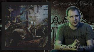 Earl Sweatshirt - FEET OF CLAY - Album Review