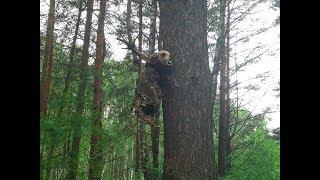 Ужас!Наткнулись на монстра в лесу.Чьи трупы висят на деревьях?...18+