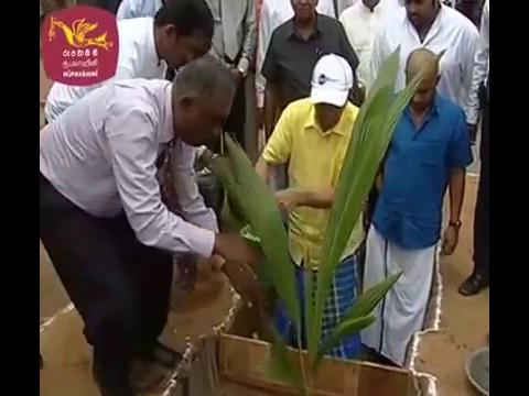 Kilinochchi Coconut Cultivation Program