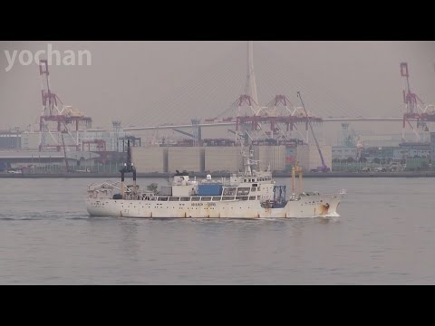 Research Vessel / Survey Ship: KAIYOMARU NO.1 (Kaiyo Engineering, IMO: 8401365)