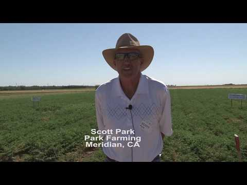 Benefits of Soil Management for Farming Systems June 6, 2017 Five Points, CA