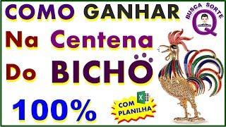 COMO GANHAR NA CENTENA DO BICHO COM 5 DÍGITOS 100%
