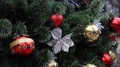 Седьмое Рождество вдали от детей: финский тренер «СКА» рассказывает о грусти и чувстве вины (Iltaleh