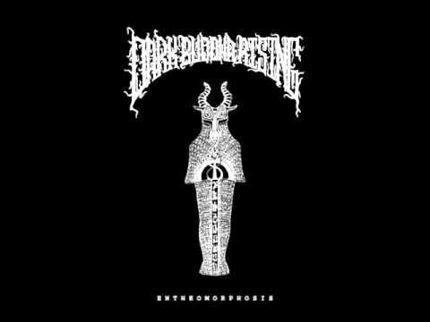 Dark Buddha Rising - Transcent