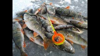 Опасный лёд Ловля окуня со льда на мормышку На Рыбалку для души