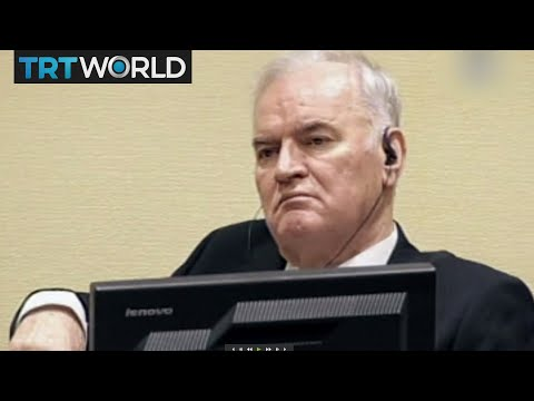 Mladic found guilty, Striving for a unified Palestine and Yemen's aid crisis