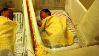 Empat Bayi Lucu Baru Lahir, Sehat dan Normal