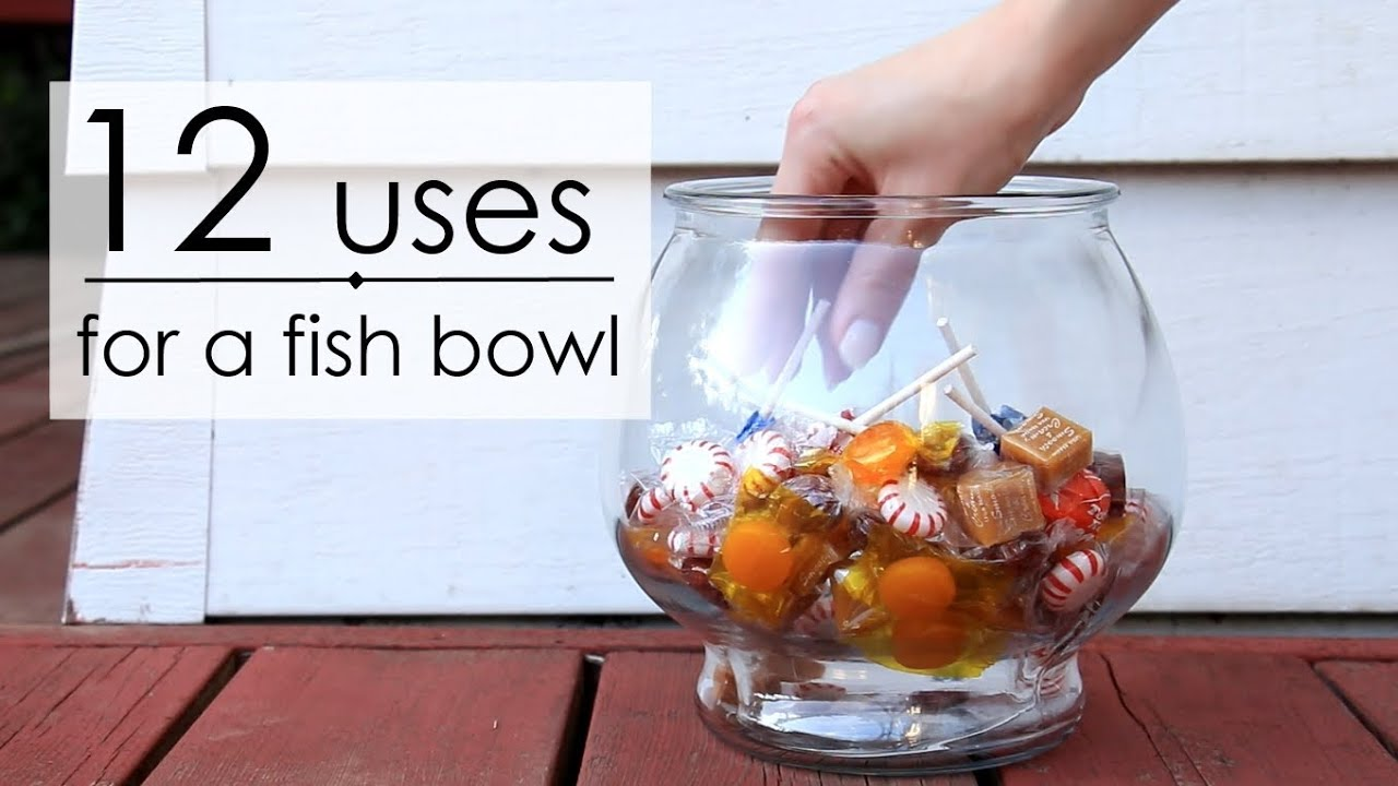 12 uses for a fish bowl youtube for How to make a fish bowl