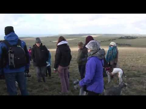 Eastbourne's Downland sell off protest
