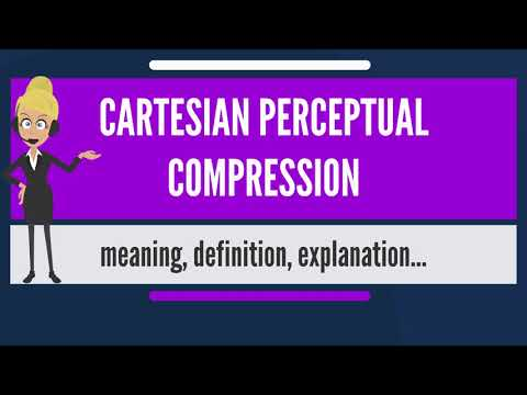 What is CARTESIAN PERCEPTUAL COMPRESSION? What does CARTESIAN PERCEPTUAL COMPRESSION mean?