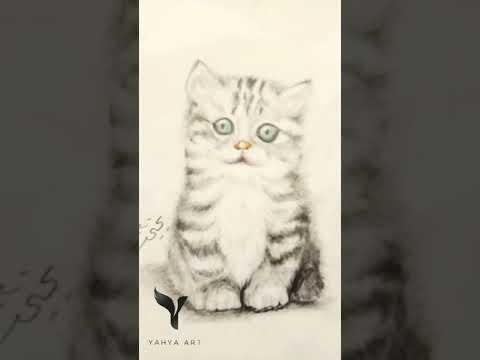 رسم-قطة-بالفحم-والألوان-الخشبية