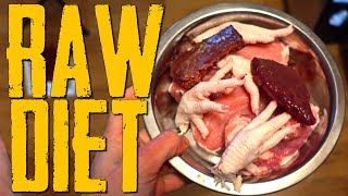 RAW Diet Full Day of Eating Cane Corso