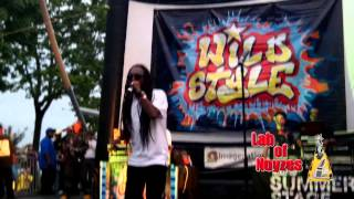 Wild Style 30th Anniversary - August 26 2013 - Busy Bee