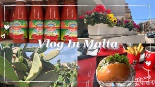 vlog | Malta | 대충 몰타 일상 영상 | 밥…