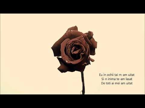 Damian Draghici feat. Feli - Trandafire (toribute karaoke mix)