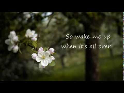 Wake me up Madilyn Bailey cover (lyrics)