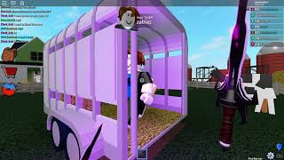 ROBLOX ASSASSIN PRACTICING FOR COMPETITIVE + OPENING A SUMMER CASE