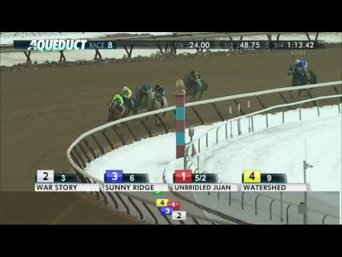 War Story - 2016 Queens County Stakes