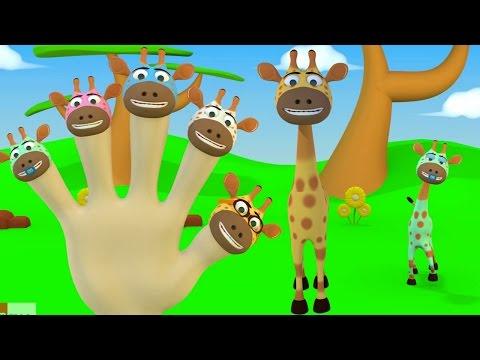 Jari Jariku - Jerapah 3D  (Car Finger Family Song) | Lagu Anak Indonesia