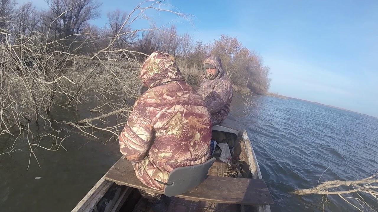 Запреты на рыбалку 2019 астраханская область