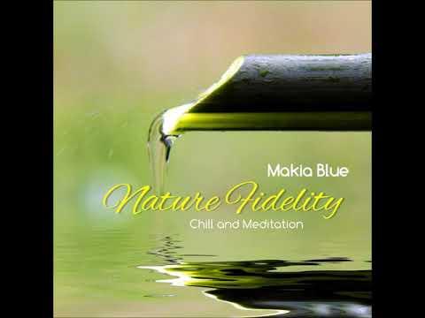 Makia Blue - Nature Fidelity [#meditation #newageMUSIC #chillout]