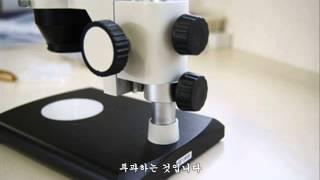 엄민수 현미경