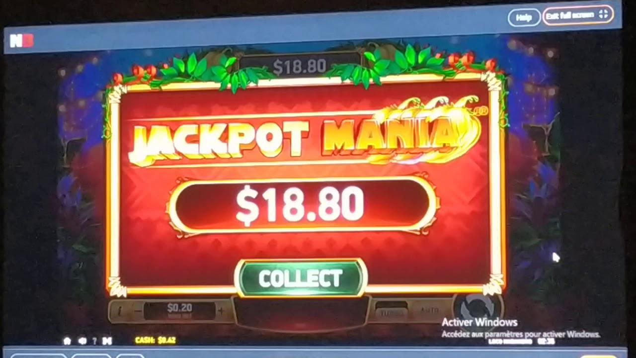 Betnet Casino