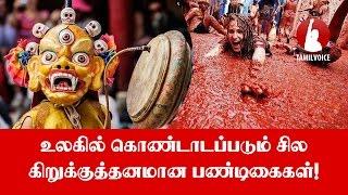 உலகில் கொண்டாடப்படும் சில கிறுக்குத்தனமான பண்டிகைகள்! - Tamil Voice