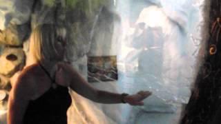 Katmandu park magaluf video 2