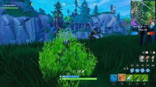 Salad and Beans camo works on Fortnite!