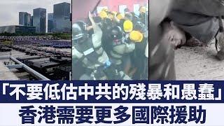 自由港在哭泣 別讓港人孤身面對殘暴政權 新唐人亞太電視 20190816