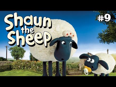 Shaun The Sheep Wash Day S1e8 (dvdrip Xvid)