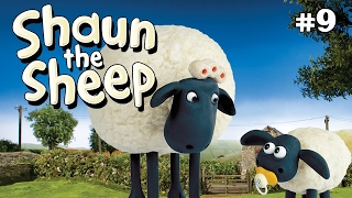 Shaun the Sheep -  Wash Day S1E8 (DVDRip XvID)