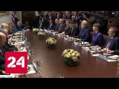 Трамп заявил прибалтийским лидерам, что они тупицы - Россия 24 - Простые вкусные домашние видео рецепты блюд