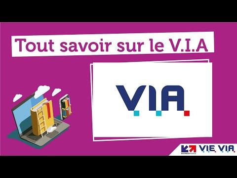 Tout savoir sur le V.I.A (Volontariat International en Administration)