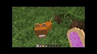 Minecraft: Nyan Cat Mod