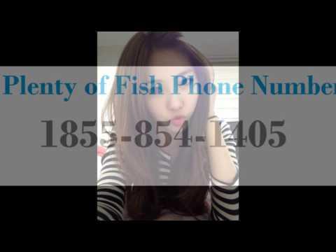 pof dating customer service number