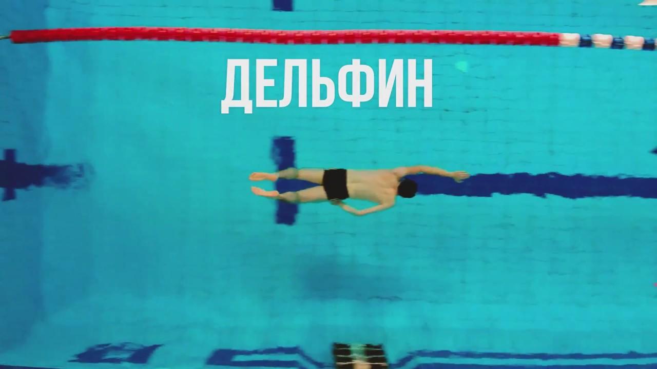 Плавать может каждый! Дельфин, гребок одной рукой.