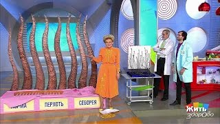 видео Елена Малышева. Лечение себореи кожи головы.