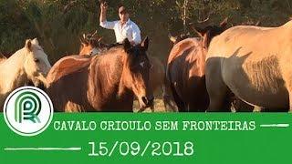 Acompanhe o programa Cavalo Crioulo sem Fronteiras de 15 de setembro
