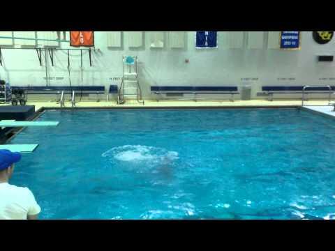 Ali House - Diving 303B