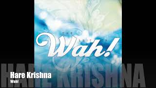 Play Hare Krishna
