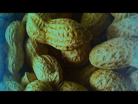 New guidelines to prevent peanut allergies