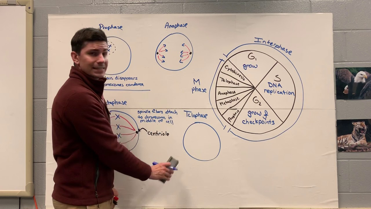 Keystone Biology Review 5 - YouTube