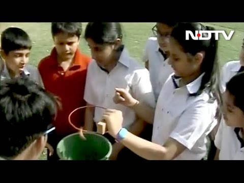 The Green School That Makes A Difference