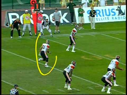 Jarious Jackson touchdown pass to Geroy Simon #2 in Edmonton