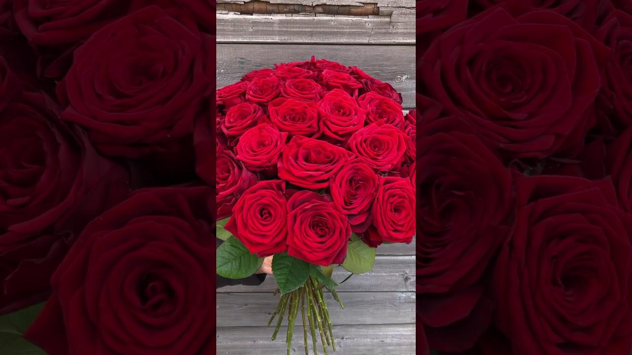 25 красных роз 50 см