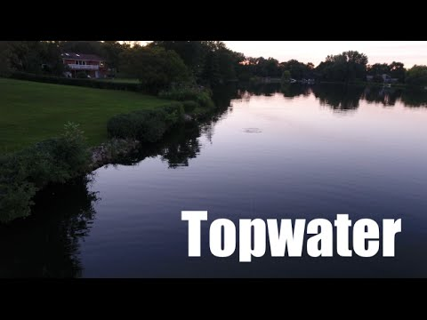 Topwater Drone Blowups, Bagels, and Ex-Girlfriends