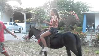 Beautiful Rider On Pony